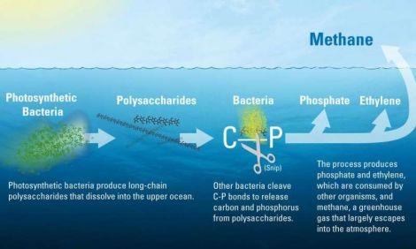 Giải thích nguồn gốc bí ẩn của metan dưới đại dương