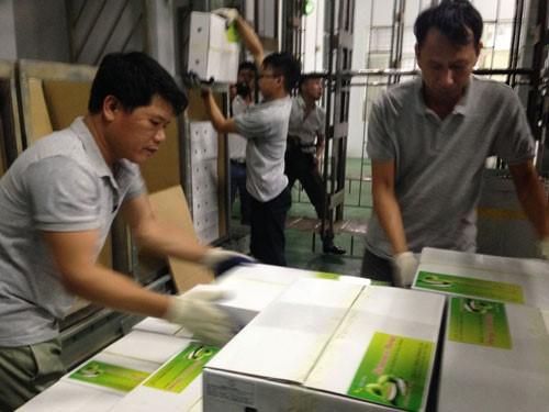 5 tấn xoài đầu tiên của tỉnh Sơn La được chiếu xạ xuất khẩu sang Ôxtrâylia