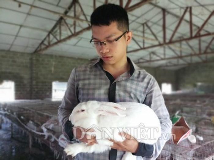 Thanh niên về quê nuôi thỏ thu trăm triệu/năm