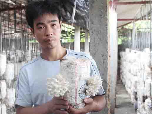 Thu 1 tỷ đồng mỗi năm nhờ tuyệt chiêu trồng nấm thú vị