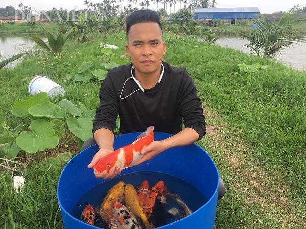 Kỹ sư bỏ lương cao về quê nuôi cá Koi
