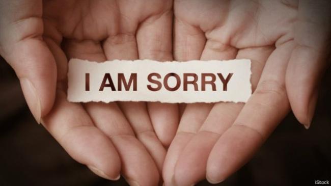 Văn hóa xin lỗi
