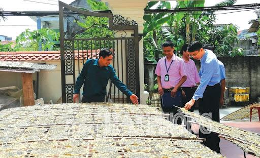 Làng nghề bánh đa Lạng Côn xã Đông Phương, huyện Kiến Thụy