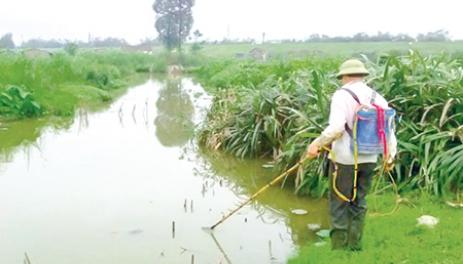 Tuyệt đối không sử dụng kích điện để bảo vệ nguồn lợi thủy sản